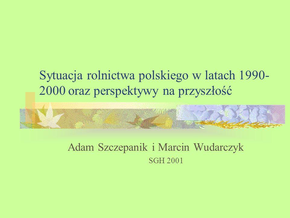 Adam Szczepanik i Marcin Wudarczyk SGH 2001