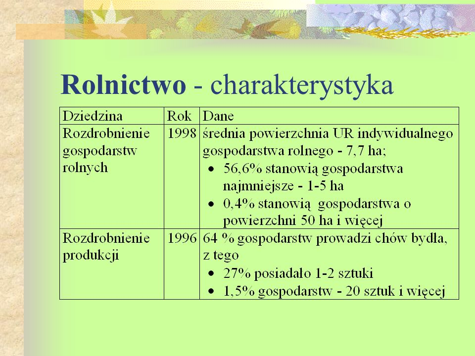 Rolnictwo - charakterystyka