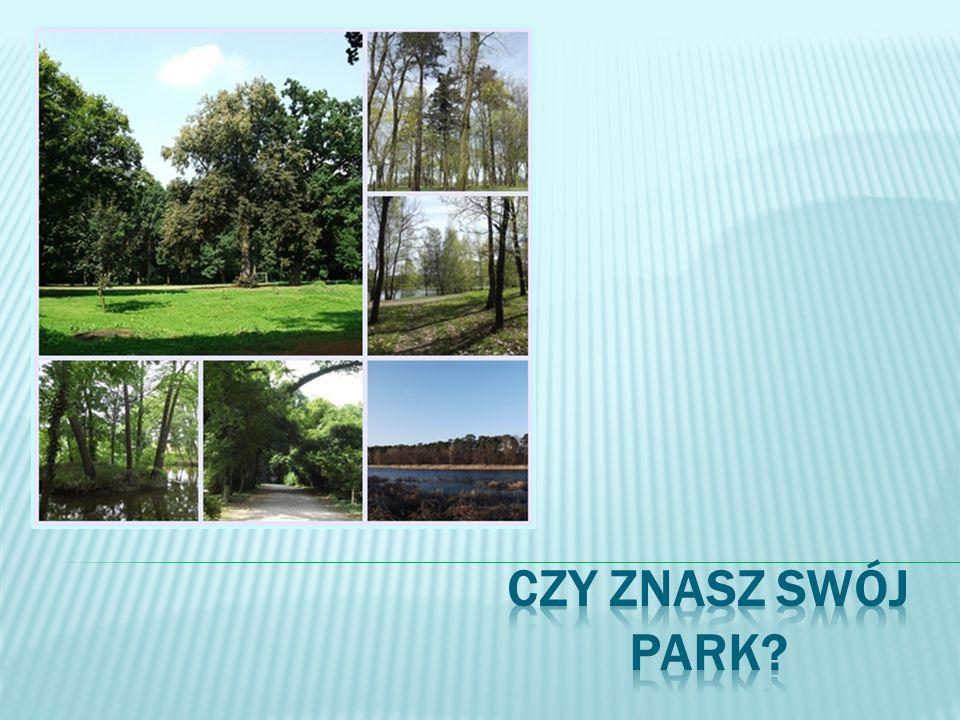 Czy znasz swój park