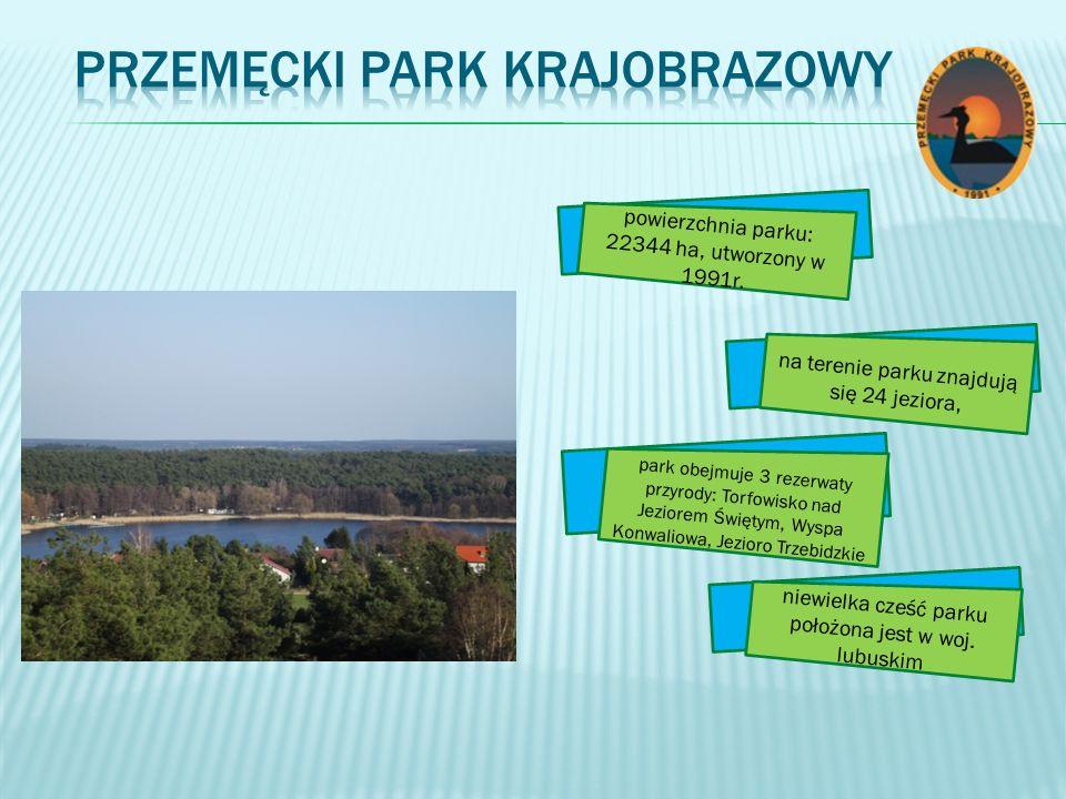 Przemęcki Park Krajobrazowy