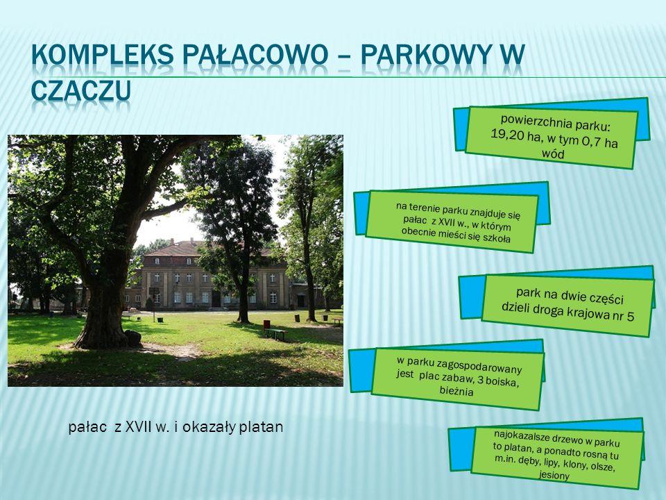 Kompleks pałacowo – parkowy w Czaczu