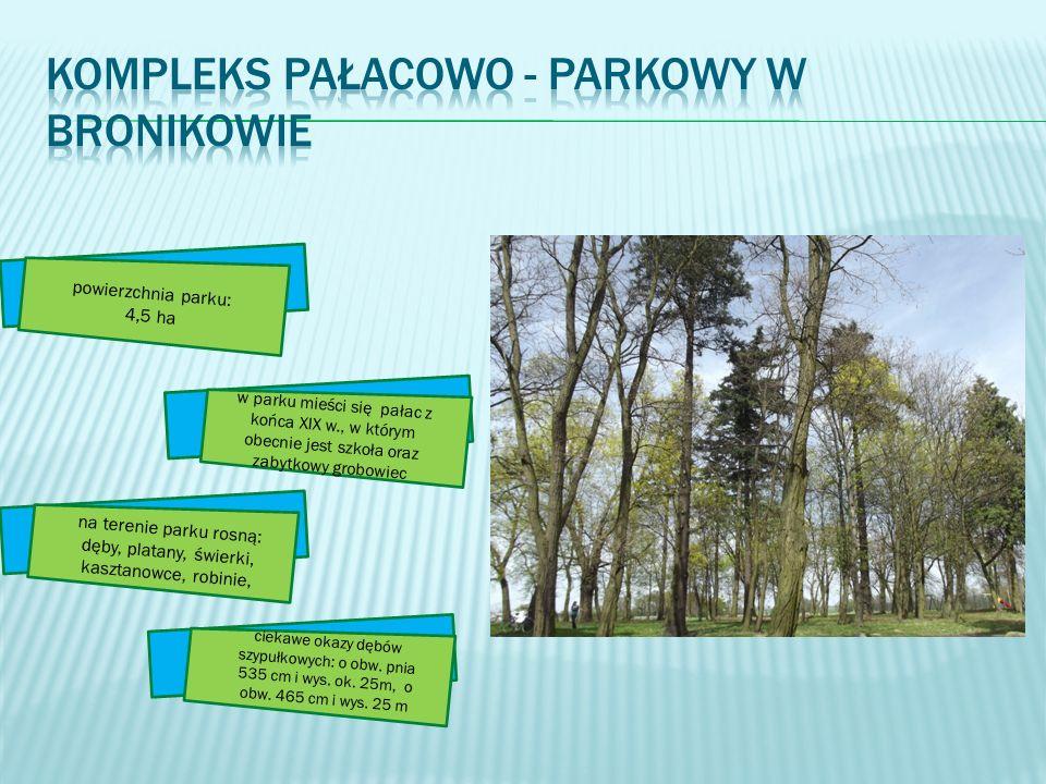 Kompleks pałacowo - parkowy w Bronikowie