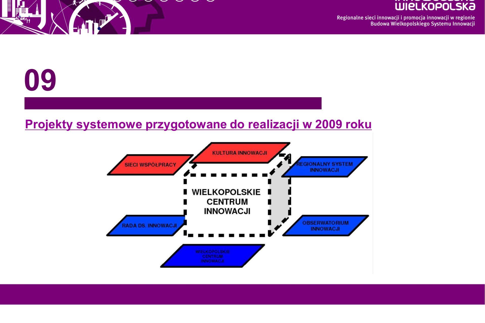 Projekty systemowe przygotowane do realizacji w 2009 roku