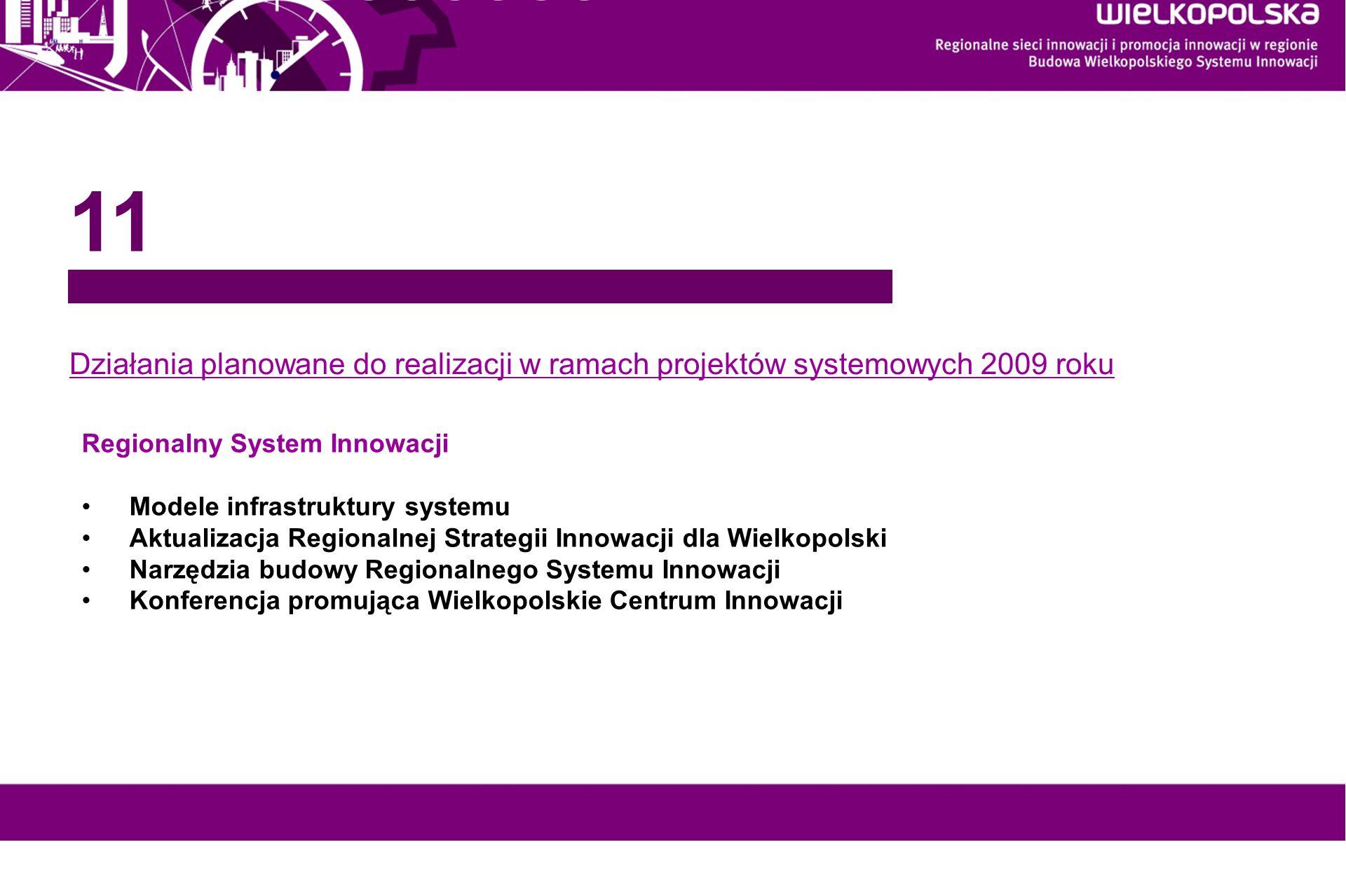 11 Działania planowane do realizacji w ramach projektów systemowych 2009 roku. Regionalny System Innowacji.