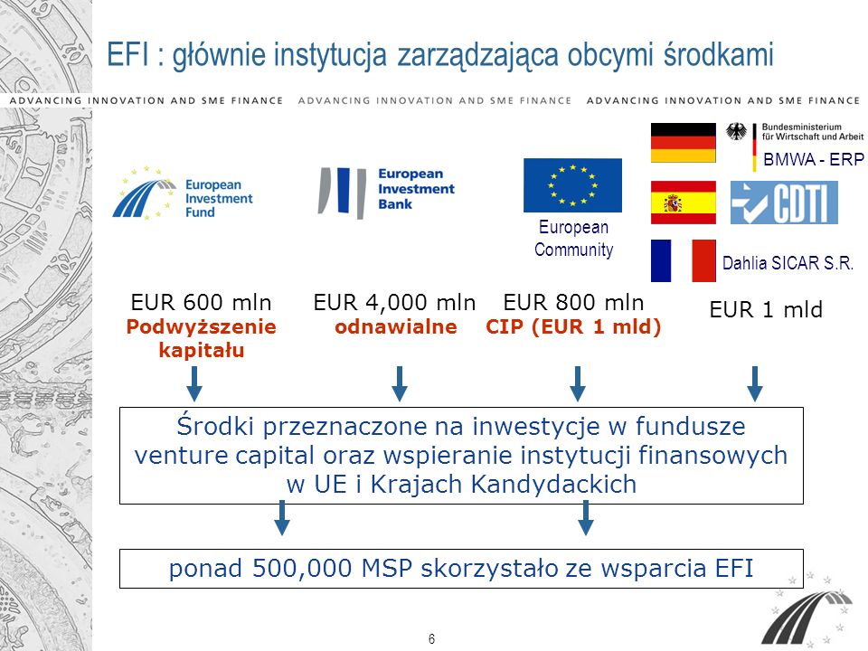 EFI : głównie instytucja zarządzająca obcymi środkami