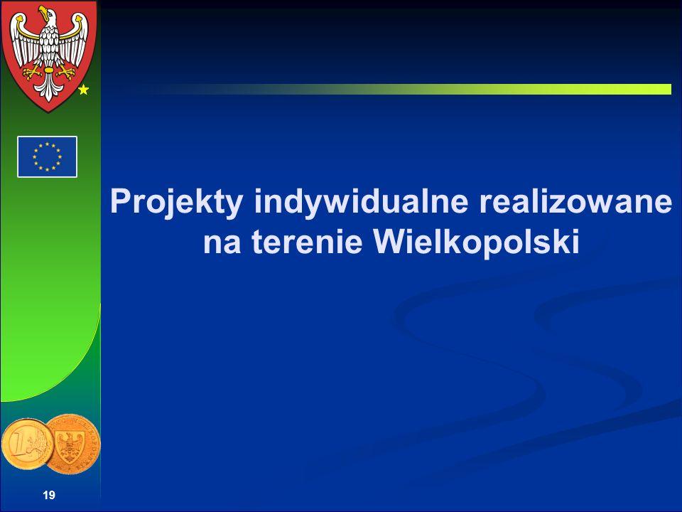 Projekty indywidualne realizowane na terenie Wielkopolski