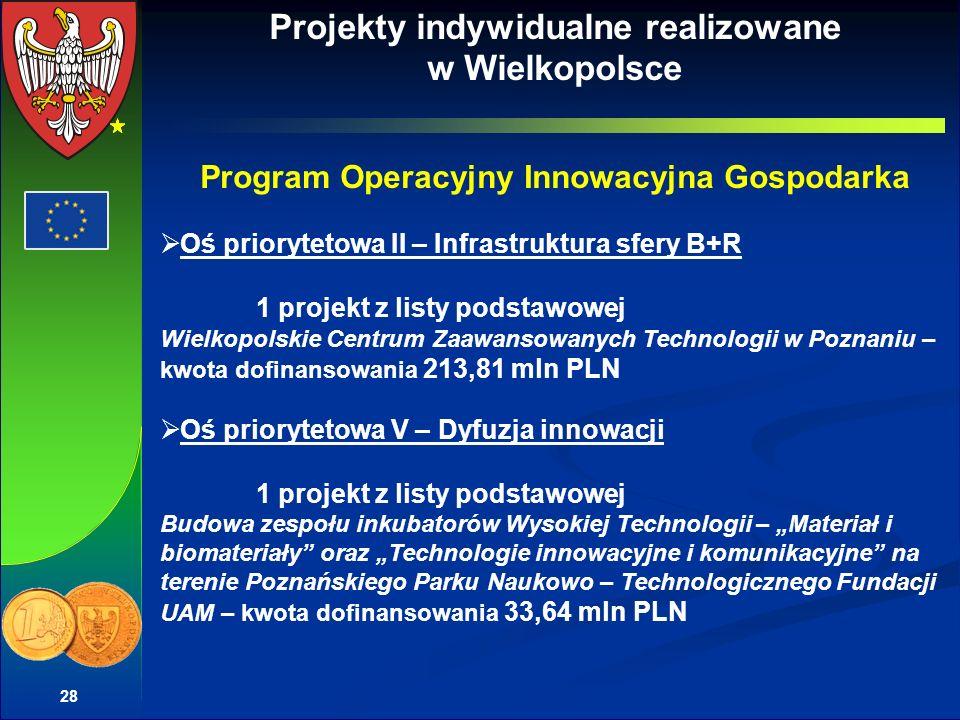 Projekty indywidualne realizowane w Wielkopolsce