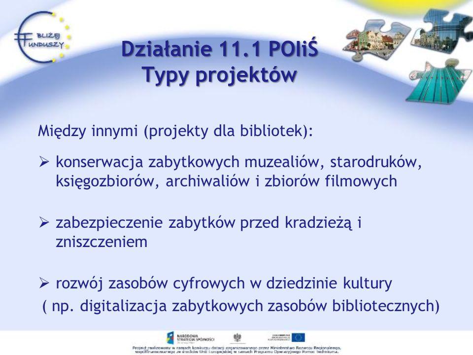 Działanie 11.1 POIiŚ Typy projektów