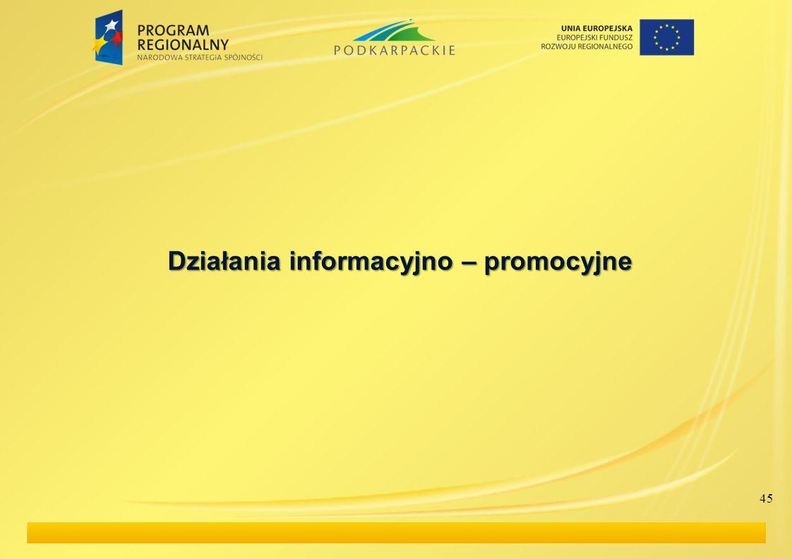 Działania informacyjno – promocyjne