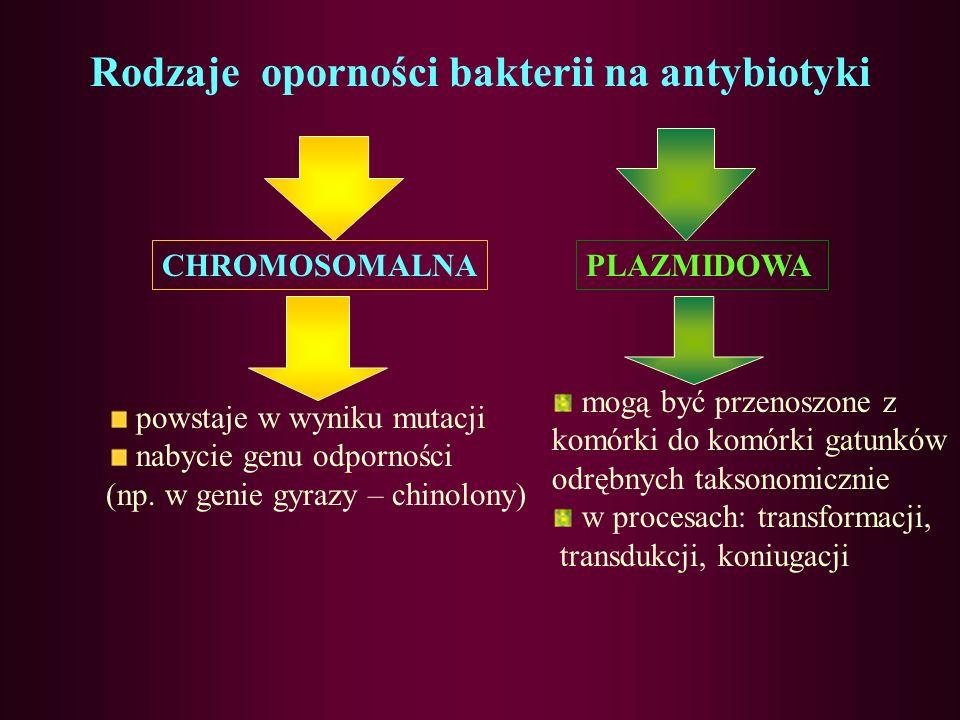 Rodzaje oporności bakterii na antybiotyki