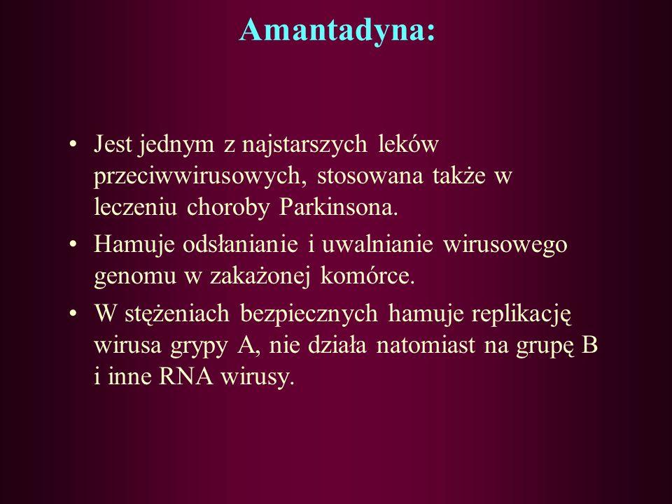 Amantadyna: Jest jednym z najstarszych leków przeciwwirusowych, stosowana także w leczeniu choroby Parkinsona.