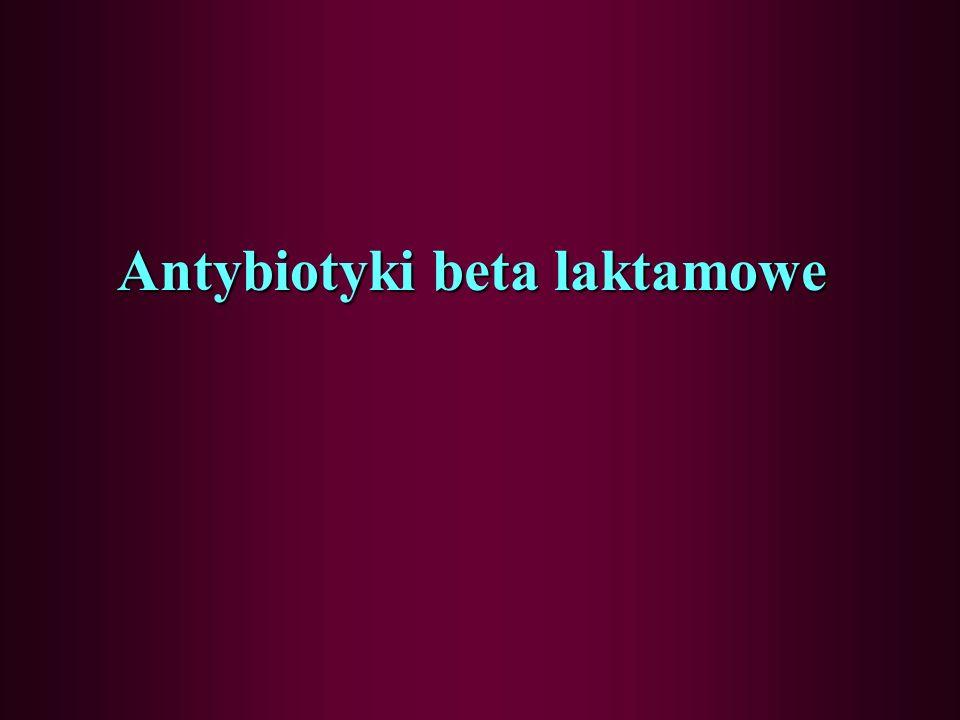 Antybiotyki beta laktamowe
