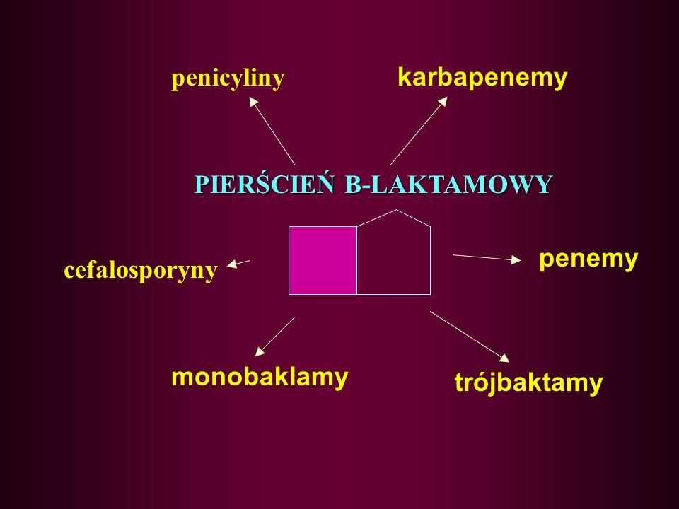 PIERŚCIEŃ B-LAKTAMOWY
