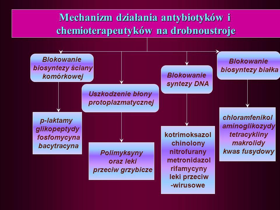 Mechanizm działania antybiotyków i chemioterapeutyków na drobnoustroje