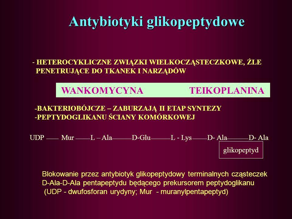 Antybiotyki glikopeptydowe