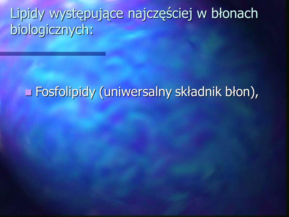 Lipidy występujące najczęściej w błonach biologicznych: