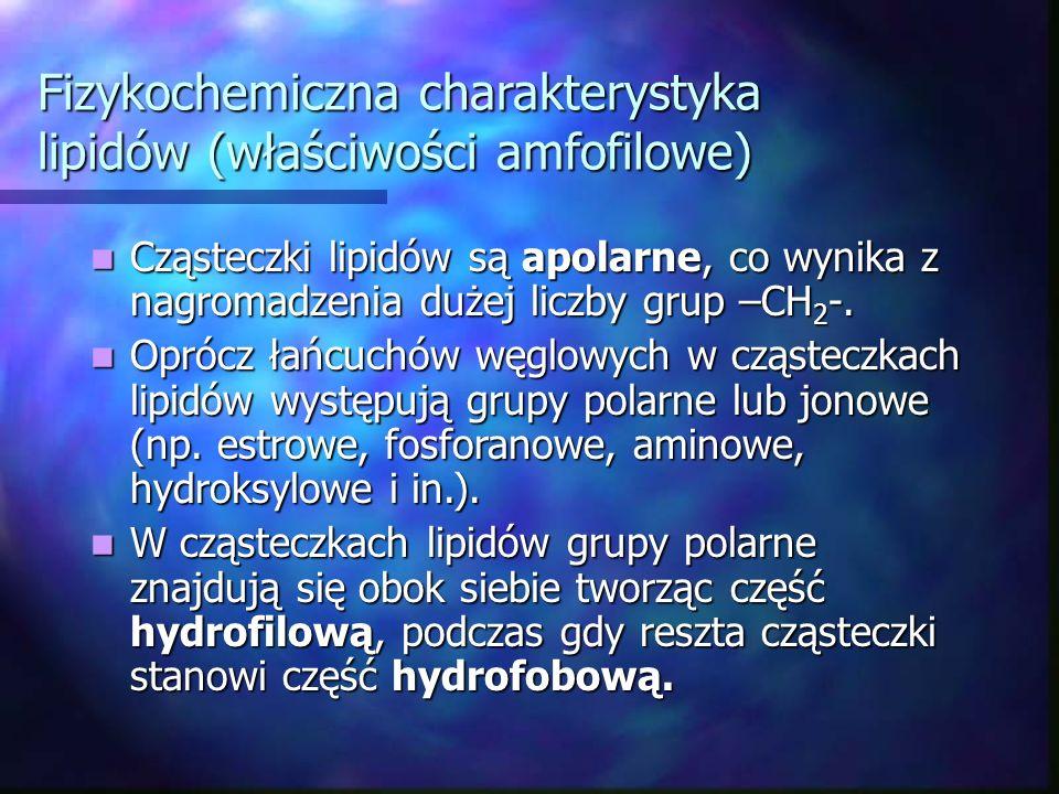 Fizykochemiczna charakterystyka lipidów (właściwości amfofilowe)