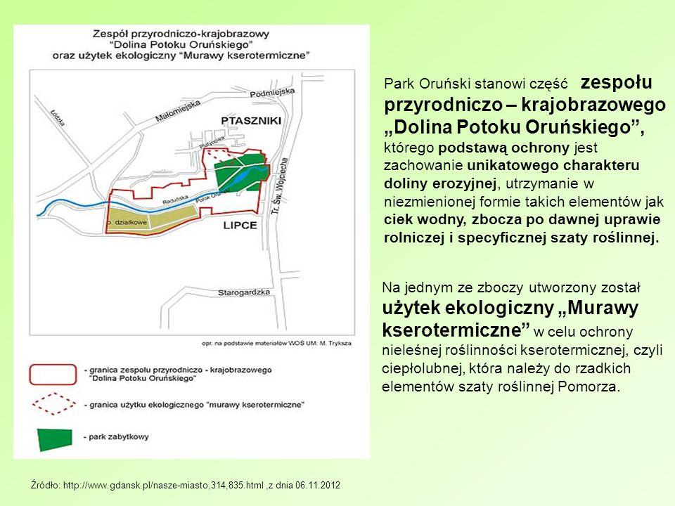 """Park Oruński stanowi część zespołu przyrodniczo – krajobrazowego """"Dolina Potoku Oruńskiego , którego podstawą ochrony jest zachowanie unikatowego charakteru doliny erozyjnej, utrzymanie w niezmienionej formie takich elementów jak ciek wodny, zbocza po dawnej uprawie rolniczej i specyficznej szaty roślinnej."""
