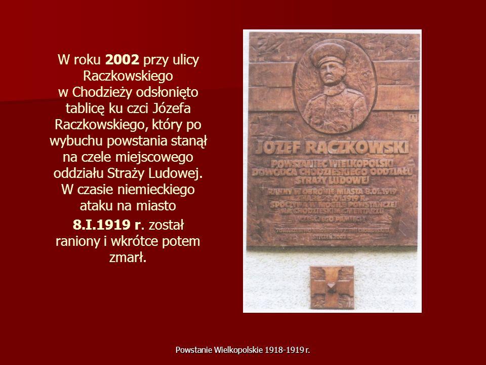 8.I.1919 r. został raniony i wkrótce potem zmarł.