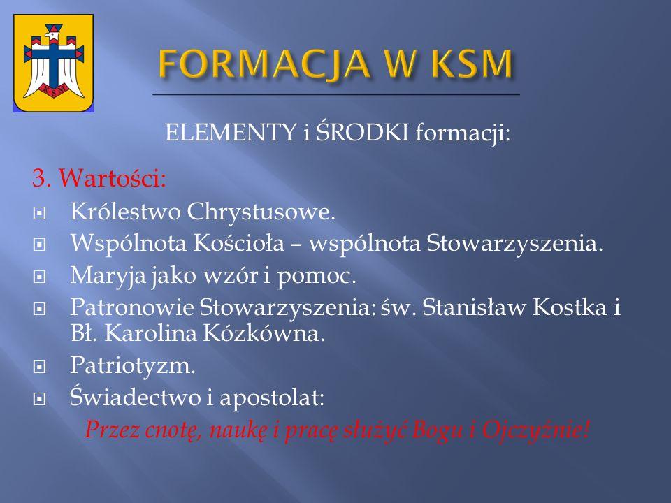 FORMACJA W KSM 3. Wartości: ELEMENTY i ŚRODKI formacji: