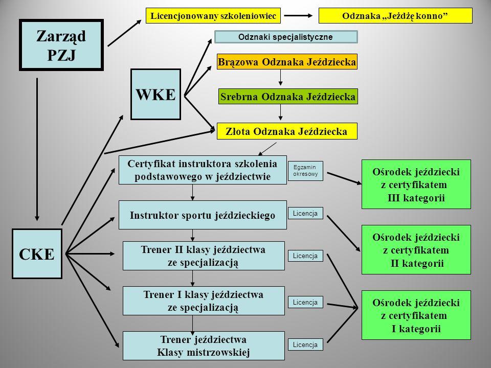 Zarząd PZJ WKE CKE Odznaki specjalistyczne Brązowa Odznaka Jeździecka