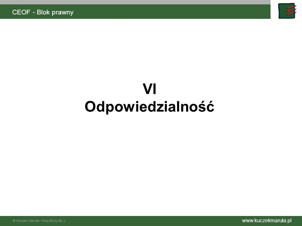 CEOF - Blok prawny VI Odpowiedzialność