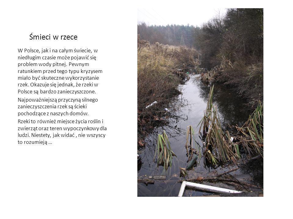 Śmieci w rzece