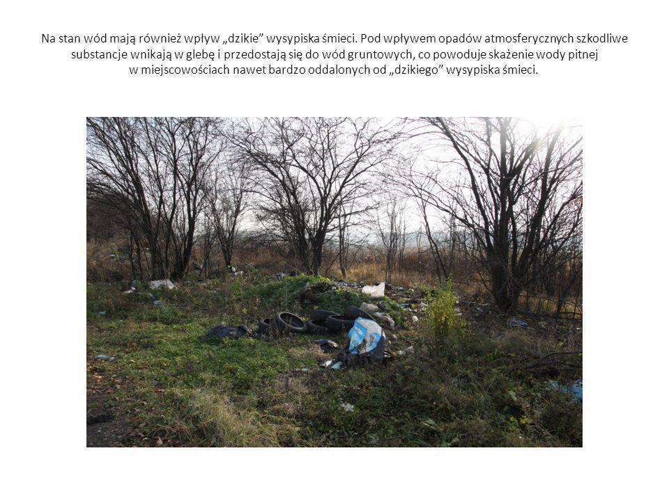 """Na stan wód mają również wpływ """"dzikie wysypiska śmieci"""