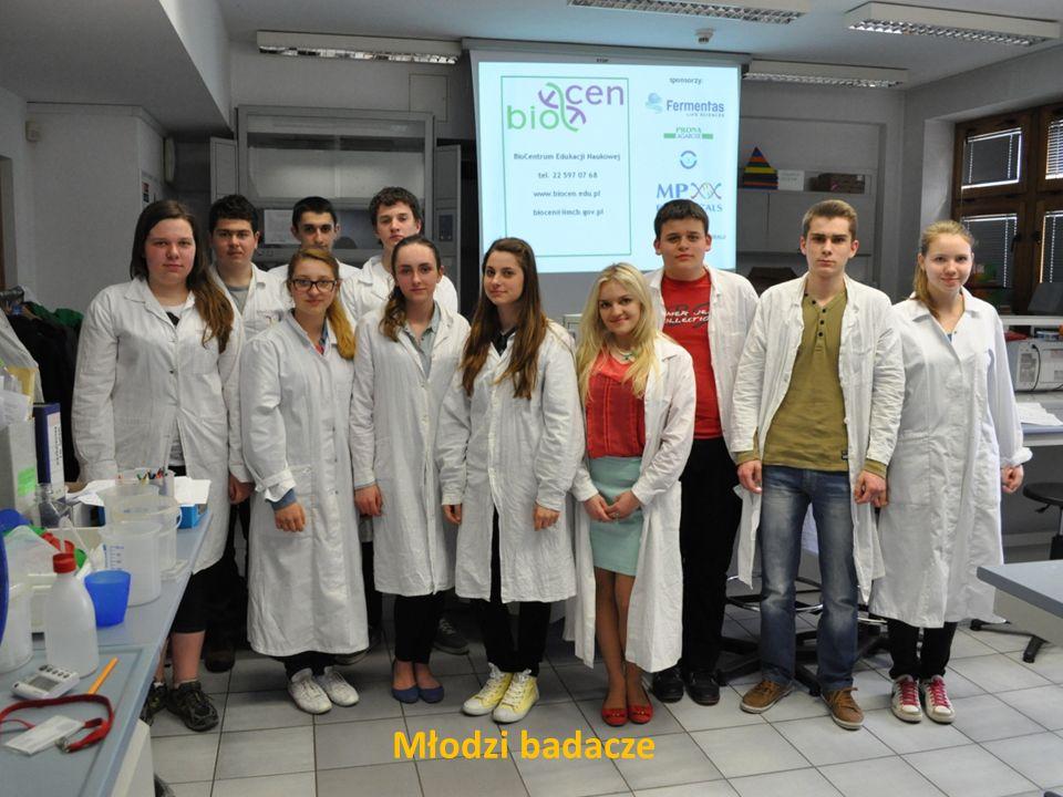 Młodzi badacze