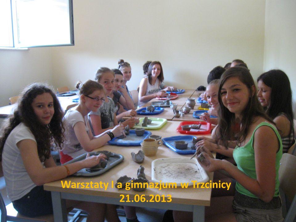 Warsztaty I a gimnazjum w Trzcinicy 21.06.2013