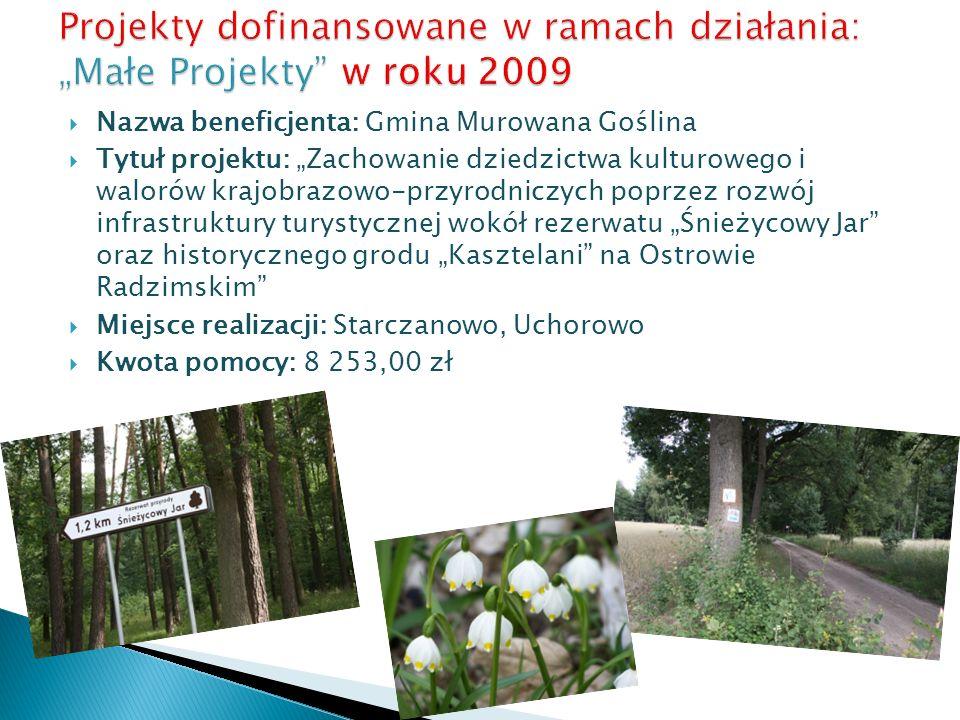 """Projekty dofinansowane w ramach działania: """"Małe Projekty w roku 2009"""