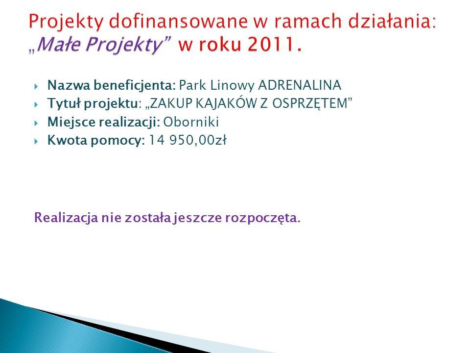 """Projekty dofinansowane w ramach działania: """"Małe Projekty w roku 2011."""