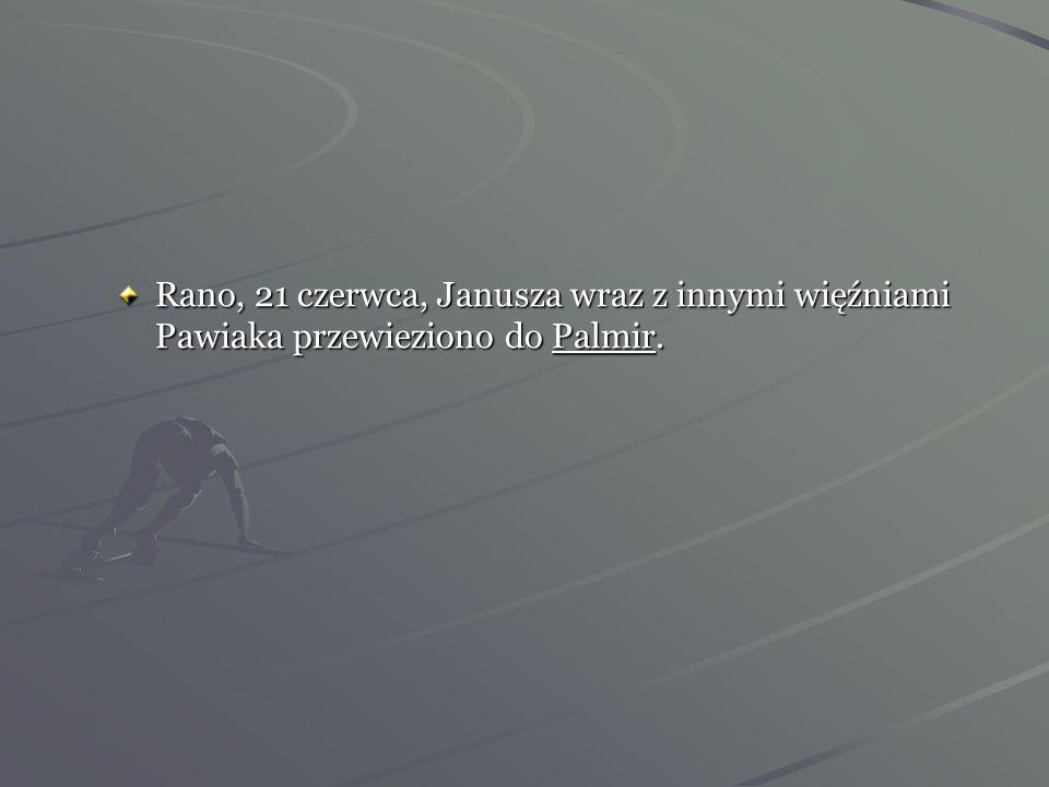 Rano, 21 czerwca, Janusza wraz z innymi więźniami Pawiaka przewieziono do Palmir.