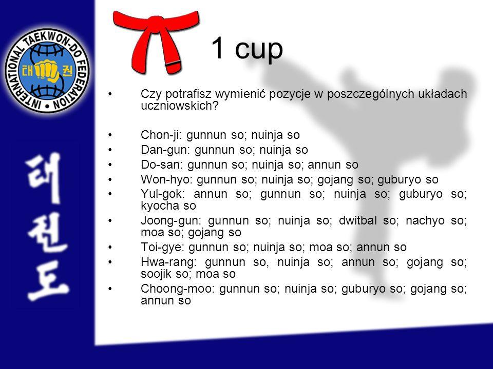 1 cup Czy potrafisz wymienić pozycje w poszczególnych układach uczniowskich Chon-ji: gunnun so; nuinja so.