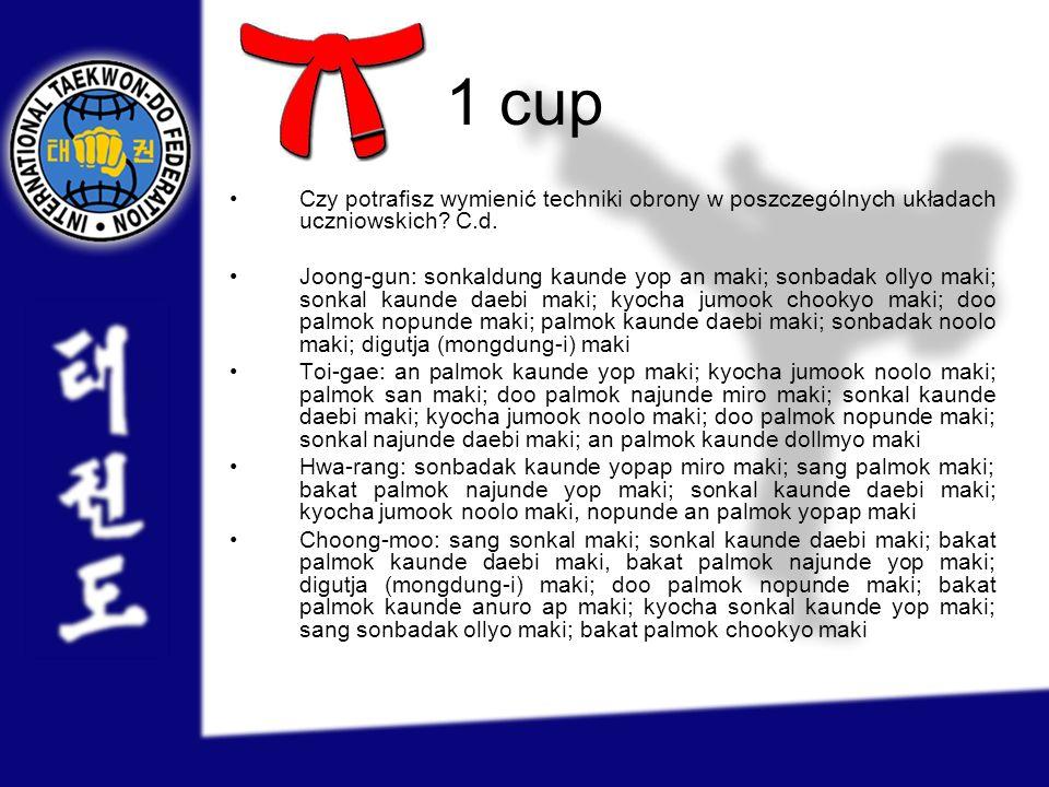 1 cup Czy potrafisz wymienić techniki obrony w poszczególnych układach uczniowskich C.d.