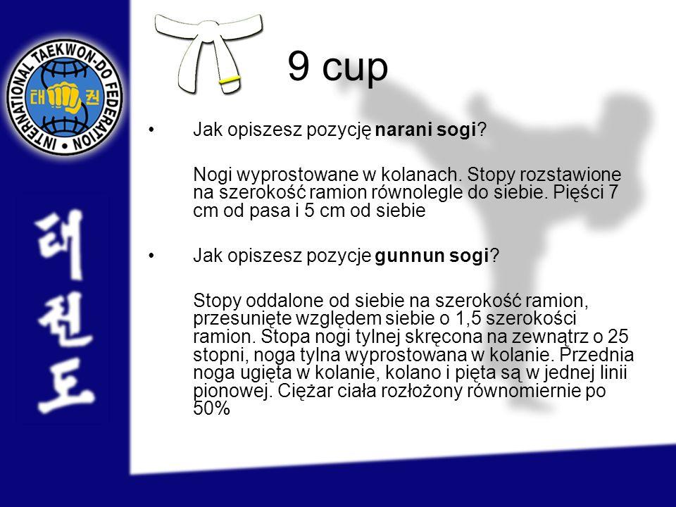 9 cup Jak opiszesz pozycję narani sogi