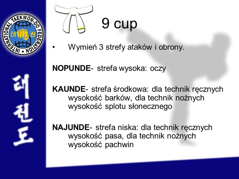 9 cup Wymień 3 strefy ataków i obrony. NOPUNDE- strefa wysoka: oczy