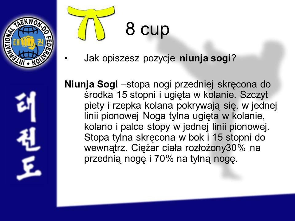 8 cup Jak opiszesz pozycje niunja sogi