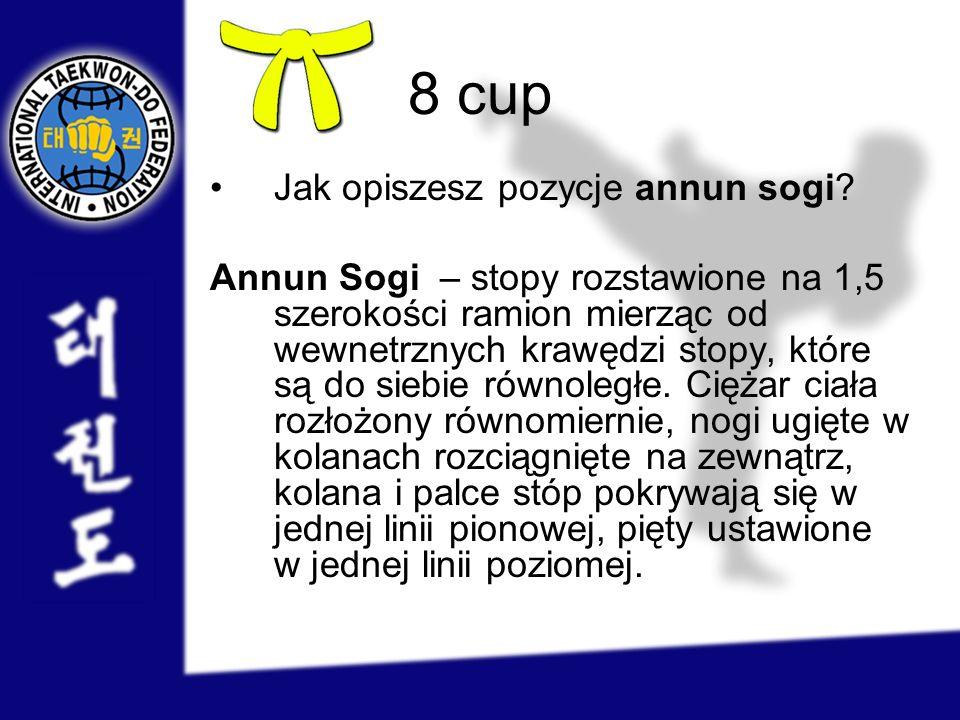 8 cup Jak opiszesz pozycje annun sogi