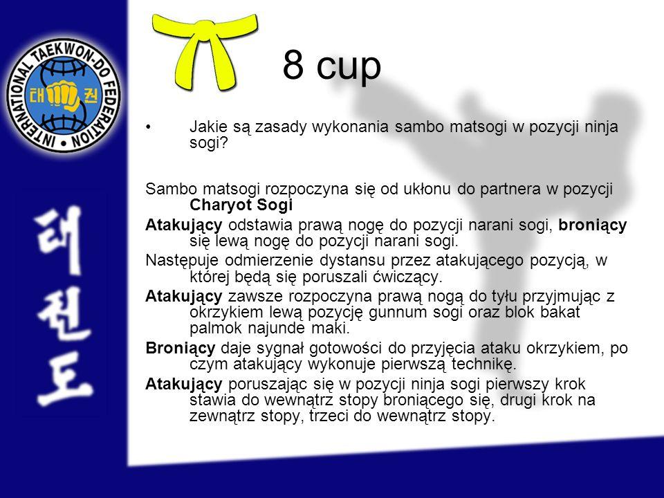 8 cup Jakie są zasady wykonania sambo matsogi w pozycji ninja sogi