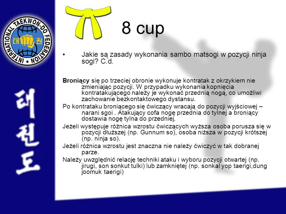 8 cup Jakie są zasady wykonania sambo matsogi w pozycji ninja sogi C.d.