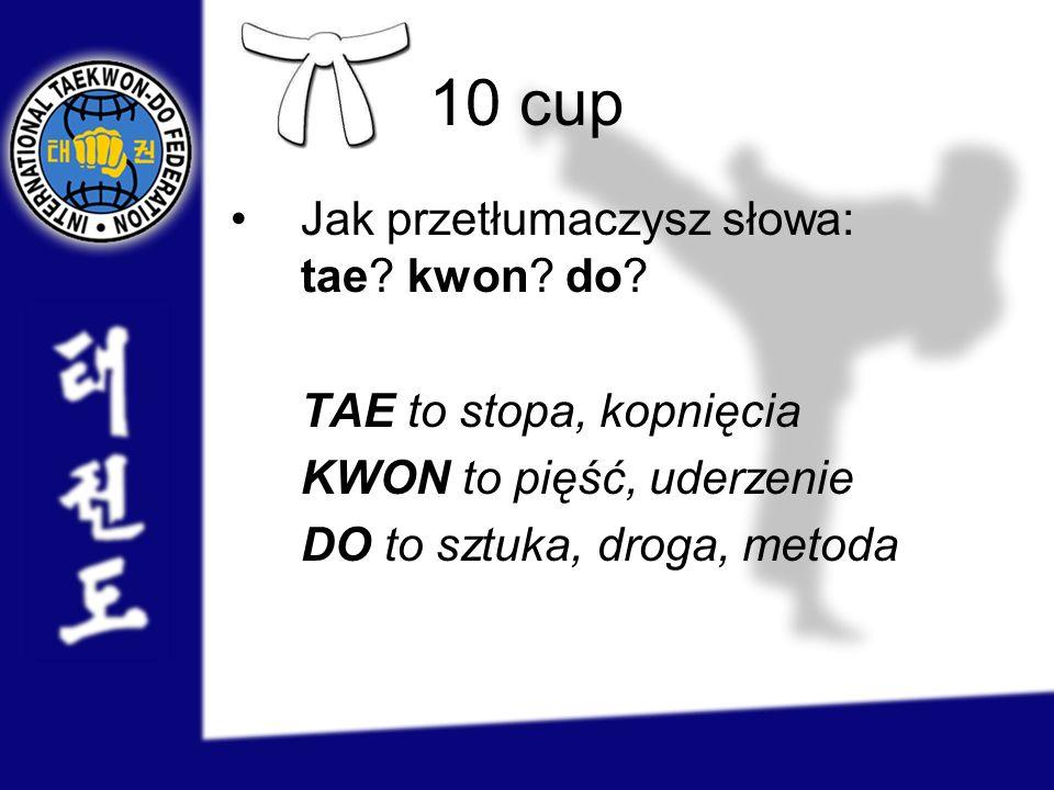 10 cup Jak przetłumaczysz słowa: tae kwon do