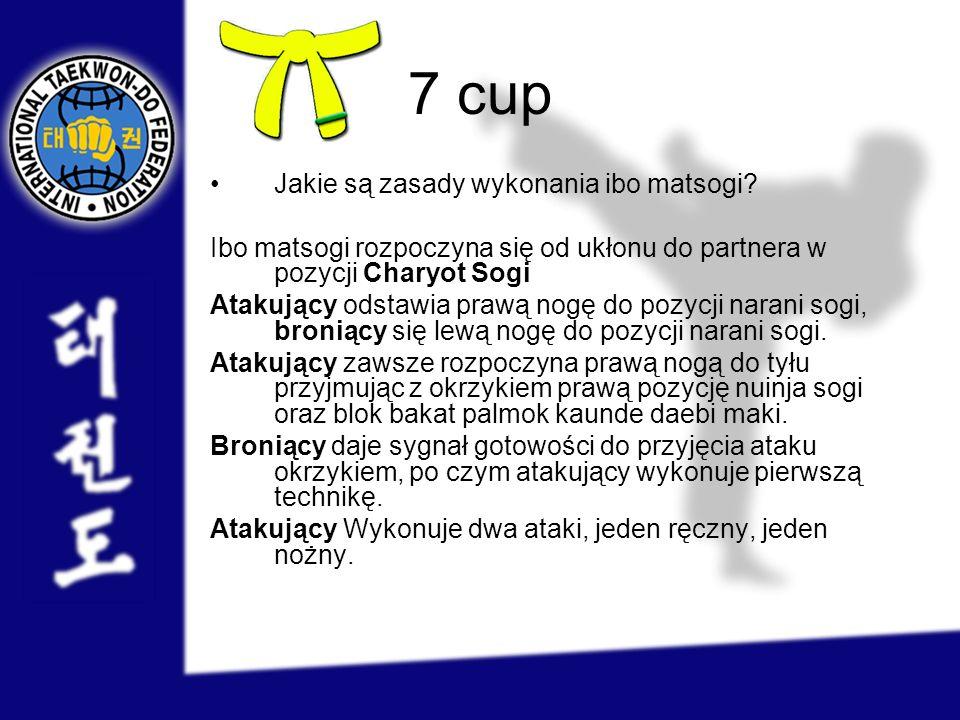 7 cup Jakie są zasady wykonania ibo matsogi