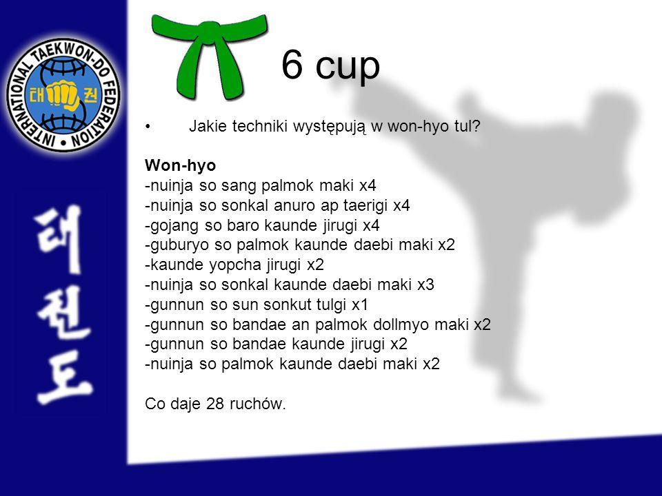 6 cup Jakie techniki występują w won-hyo tul Won-hyo