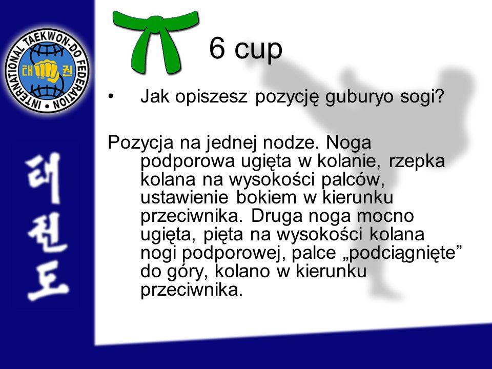 6 cup Jak opiszesz pozycję guburyo sogi