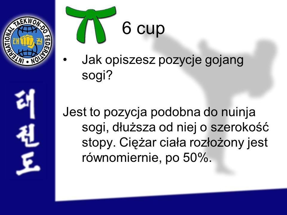 6 cup Jak opiszesz pozycje gojang sogi