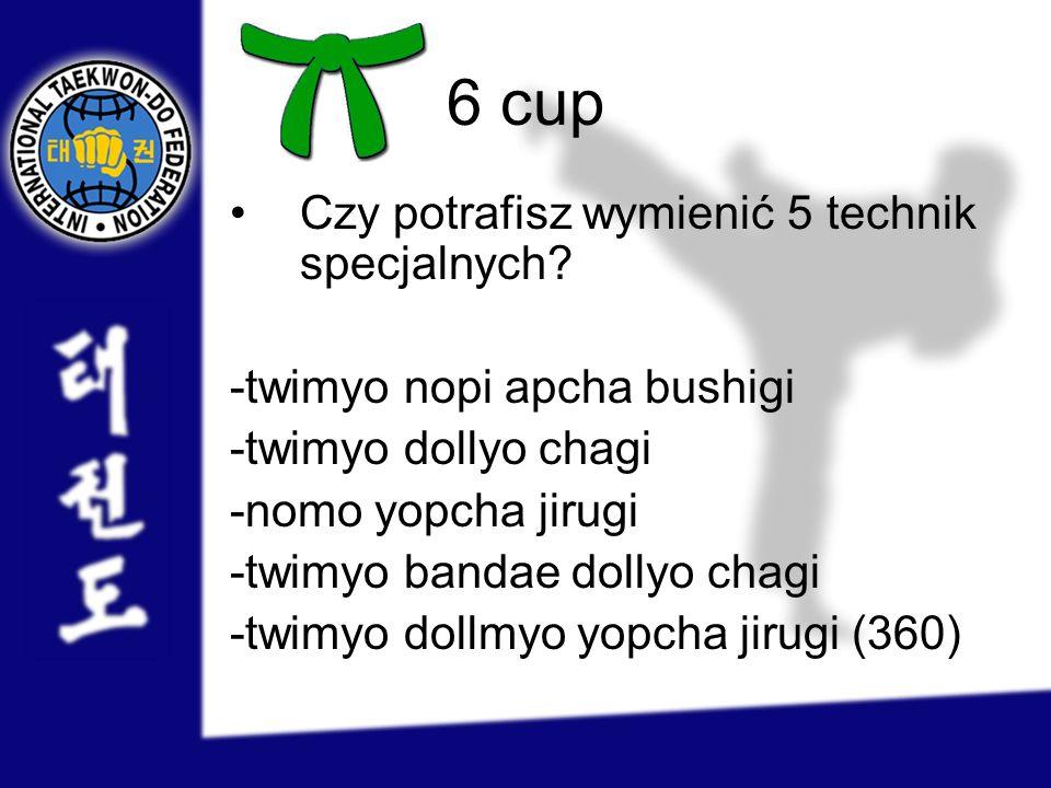 6 cup Czy potrafisz wymienić 5 technik specjalnych