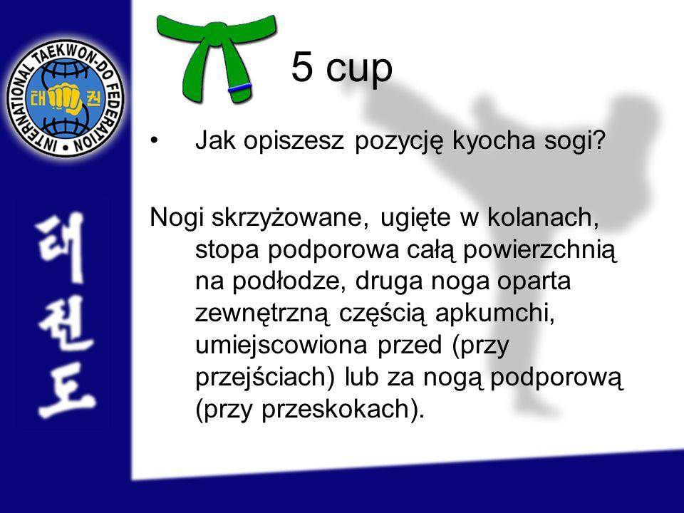 5 cup Jak opiszesz pozycję kyocha sogi