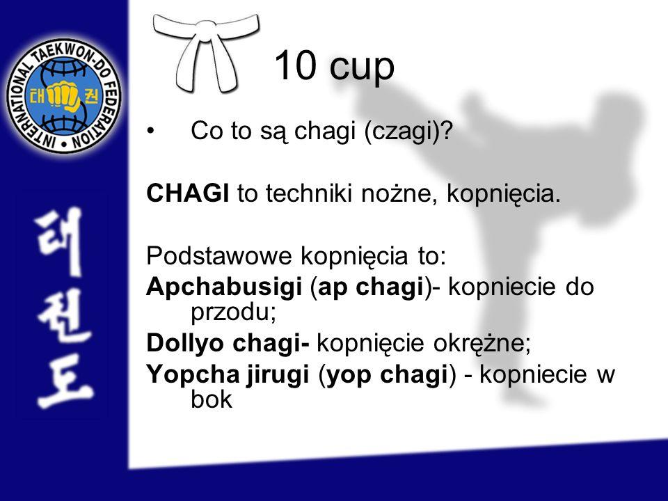 10 cup Co to są chagi (czagi) CHAGI to techniki nożne, kopnięcia.