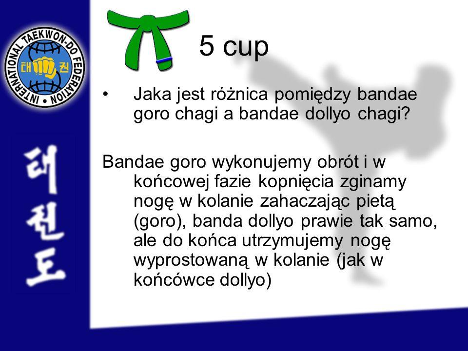 5 cup Jaka jest różnica pomiędzy bandae goro chagi a bandae dollyo chagi